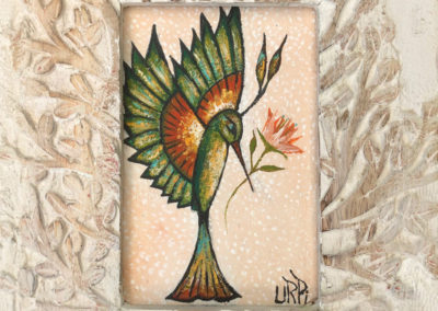 Mi colibri verde | Mein grüner Kolibri | 20 x 25 | Copyright URPI
